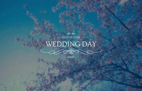 AE模板 优美优雅婚礼封面标题笔墨设计把戏模板 AE素材
