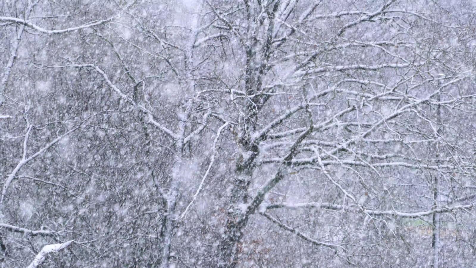 大雪纷飞浪漫场景-高清实拍-92素材网_ae模板,视频