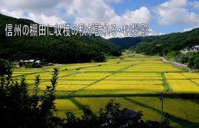 日本信州秋收美景4K延时摄影
