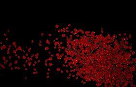 情人节婚礼玫瑰花瓣绽放LED视频