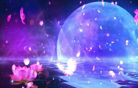唯美月空花瓣坠落特效舞台背景视频