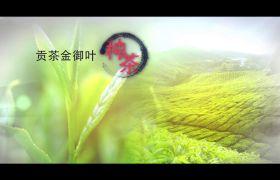 AE模板 中国水墨风传统茶文明肉体宣传模板 AE素材