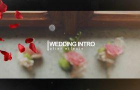 AE模板 浪漫花瓣飘洒婚礼幻灯记录模板 AE素材
