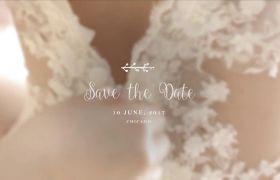 AE模板 多款浪漫婚礼开场艺术字体标题logo模板 AE素材