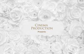 AE模板 优雅纯粹白玫瑰婚礼开场介绍模板 AE素材