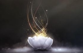 AE模板 优雅大气粒子光束花朵特效logo开场模板AE素材