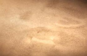 神秘沙漠粒子风沙化电影logo开场片头模板