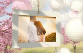 唯美浪漫樱花雨中悬挂灯笼婚礼照片回忆美好相册?模板