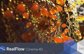 C4D流体模拟插件 NextLimit RealFlow 2.6.5.0095 Win破解版