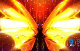 艳丽炫光多热翅膀飞舞拍打粒子坠落梦幻舞台背景视频素材