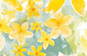 简单动态黄色白色水彩绘茉莉花舞台背景视频素材