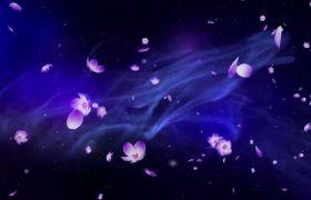 紫色唯美浪漫桃花花瓣飘落背景视频素材