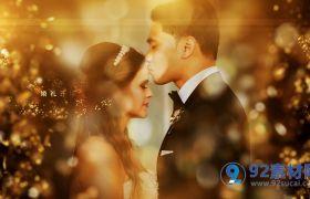 高贵华丽金色粒子时尚绚丽婚礼庆典人物介绍包装模板