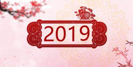 2019猪年恭贺新年新春祝福ae模板专题