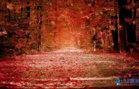 動態秋天落葉慢慢飄落led背景視頻素材