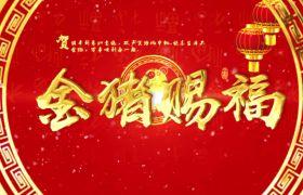 喜庆热闹烫金字体雪花红包飘落特效猪年拜年春节祝福视频AE素材