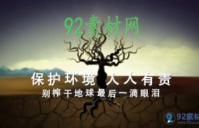 简洁大气保护环境人人有责公益宣传模板