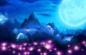唯美荧光飞舞荷塘月亮舞台背景视频素材