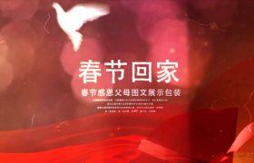 春节回家过年感恩父母图文展示模板