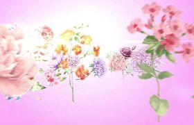 美丽花朵三八妇女节片头展示宣传模板