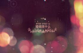 浪漫简洁大气三维空间效果粉色字幕点缀婚礼相册开场展示AE素材