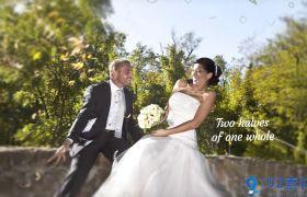 唯美浪漫画风简洁三维视差效果婚礼相册开场展示AE素材