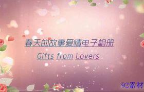精美甜蜜浪漫水彩花瓣边框电子相册会声会影模板