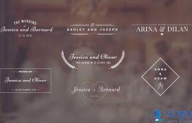 唯美大气洁白字幕条婚礼视频开场包装展示AE素材