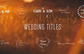 50个动态婚礼标题AE模板