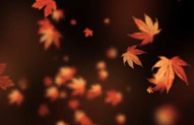 秋�鞯窳闼�得意洋洋特效背景��l素材