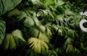 Audiojungle常用片頭開場視頻背景超實用音樂合輯第六期