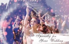 浪漫婚礼相册视频遮罩FCPX插件内含音乐素材及转场