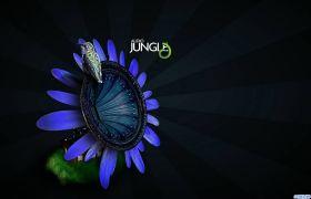 Audiojungle常用片头开场视频背景超实用音乐合辑第五期
