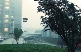 狂风暴雨高清实拍视频素材