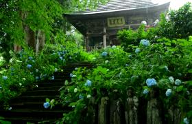 下雨天坐落在花园中的亭台高清实拍视频