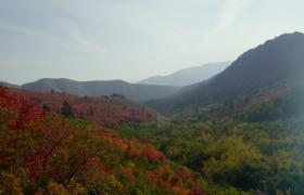 风景秀丽的大自然高清实拍视频素材