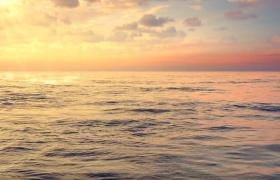 海洋生态保护宣传广告MG动画创意视频渲染高清素材下载