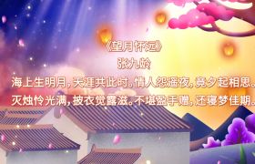 具有思念之情的中秋佳节背景视频模板