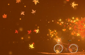 唯美的落叶飞舞?舞台背景视频素材