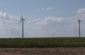 向日葵中的大风车风力发电视频模板