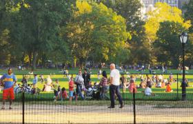 高清实拍人群在具有很多大树的草地上玩耍视频素材