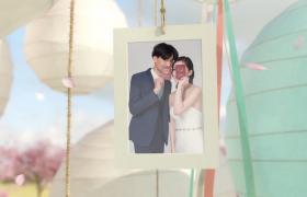 唯美浪漫的婚庆典礼开场片头相册悬挂式AE模板