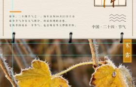 简约二十四节气-霜降主题海报设计模板