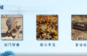 中国传统二十四节气霜降基本知识科普视频素材