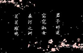 两组透明通道的桃花飘零诗词展示背景视频