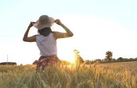 夕陽下麥田里帶著帽子的女孩實拍視頻