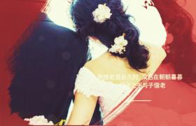 唯美浪漫的水彩笔刷婚礼相册幻灯片AE模板