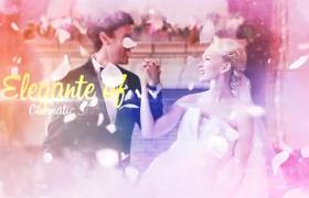 温馨浪漫的婚庆典礼照片墙展示AE模板