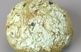 橄榄黑麦面包c4d模型素材