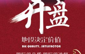 红玫瑰奖杯金牌楼王房地产广告宣传参考